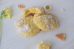 Holländische Muttertagstörtchen, Zitronen-Mandelkekse und ein Blütenmeer