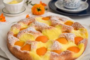 Aprikosenkuchen mit Vanillepudding